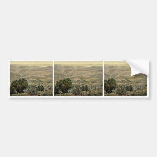 Mt. Hermon and Plain of Tabor, Holy Land, (i.e., L Bumper Stickers