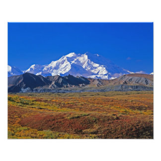 Mt . McKinley Denali National Park , Alaska. Photo Print