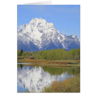 Mt. Moran Grand Teton National Park Card