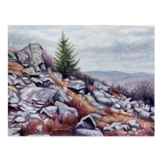 Mt. Rogers Postcard