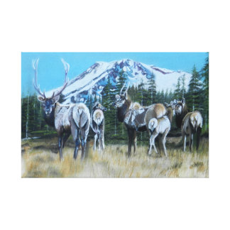 Mt. Shasta Elk Canvas Print