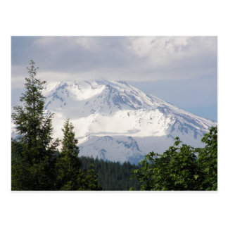 Mt. Shasta Postcard