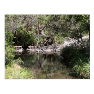 Mt Tamborine #3 Postcard