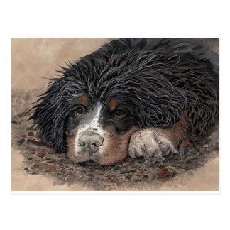 Mud Magnet Postcard