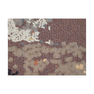 Muddy footprints over a carpet stretched canvas prints