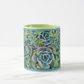 Mug beautiful cacti mixed into greenery