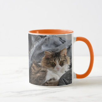 Mug Furry Friend-Fawn- Gray long hair Cat/Orange