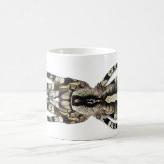 Mug - Poecilotheria regalis (Indian Ornamental)