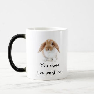 Mug/Rabbit Magic Mug