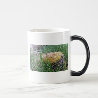 Mug with details of nature