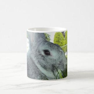 Mug with Rabbit - Rare Breed American Chinchilla