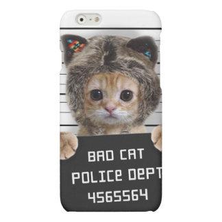 mugshot cat - crazy cat - kitty - feline