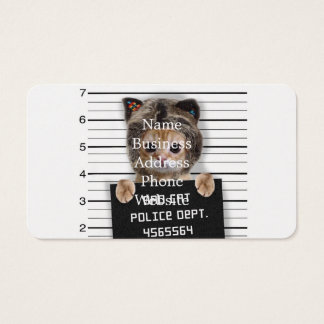 mugshot cat - crazy cat - kitty - feline business card