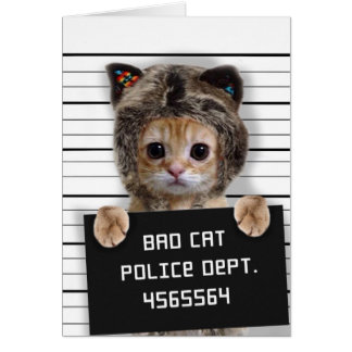 mugshot cat - crazy cat - kitty - feline card
