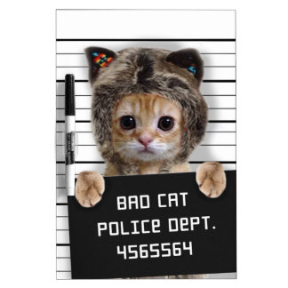 mugshot cat - crazy cat - kitty - feline dry erase board