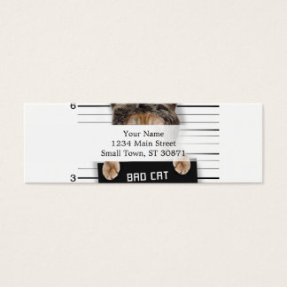 mugshot cat - crazy cat - kitty - feline mini business card