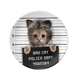 mugshot cat - crazy cat - kitty - feline plate