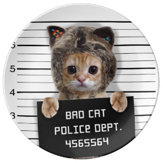 mugshot cat - crazy cat - kitty - feline plate