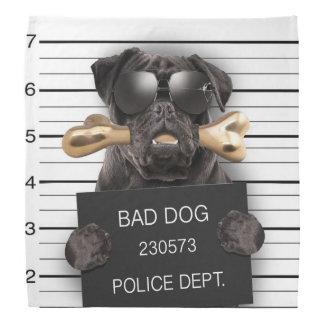 Mugshot dog,funny pug,pug bandana