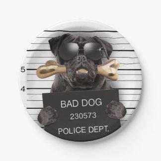 Mugshot dog,funny pug,pug paper plate