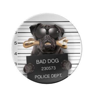 Mugshot dog,funny pug,pug plate