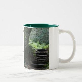Muir National Forest Mugs