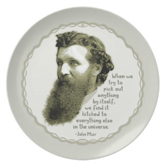 Muir Universe Plate
