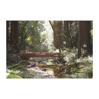 Muir Woods Bridge II Canvas Print