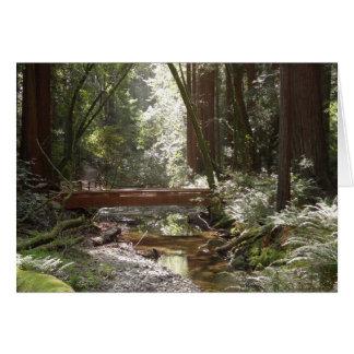 Muir Woods Bridge II Card