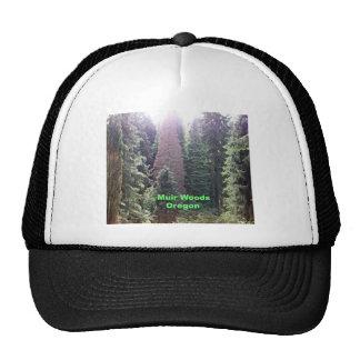 Muir Woods, Oregon Hats