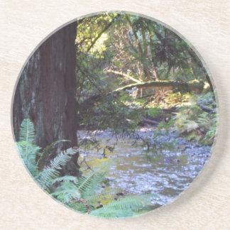 Muir Woods Stream Drink Coaster