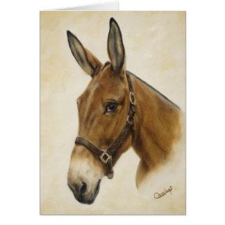 Mule Card