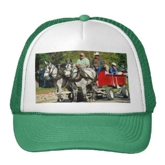 mule day parade hat