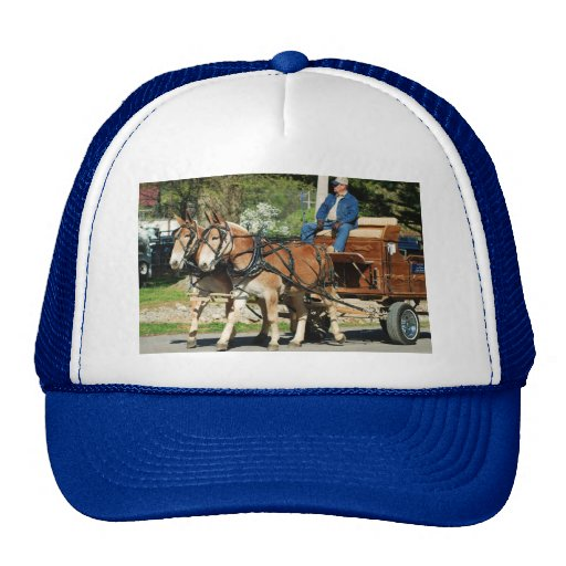 mule day parade hats