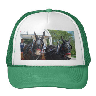 mule day parade mesh hats