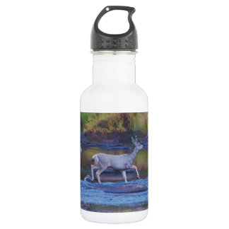 Mule Deer Doe and Fawn 532 Ml Water Bottle