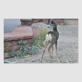 Mule Deer Fawn Zion National Park Rectangular Sticker