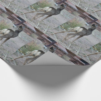 Mule Deer Fawn Zion National Park Wrapping Paper