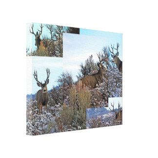 Mule deer photo art canvas print