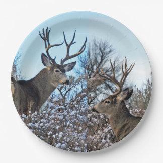 Mule deer photo art paper plate