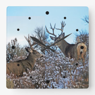 Mule deer photo art square wall clock