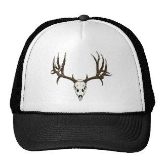 Mule deer skull cap