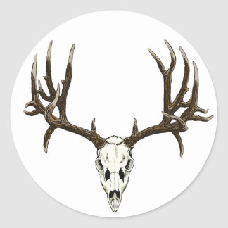 Mule Deer skull Stickers