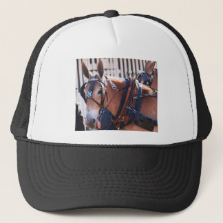 mules and donkeys 026 trucker hat