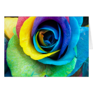 Mulit-Colored Rose by SnapDaddy, can Personalize! Card