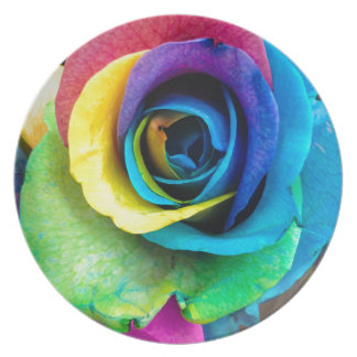 Mulit-Colored Rose by SnapDaddy, can Personalize! Party Plates