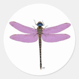 Multi Color Dragonflies Classic Round Sticker