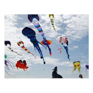 Multi Color Kites Painting the sky Postcard