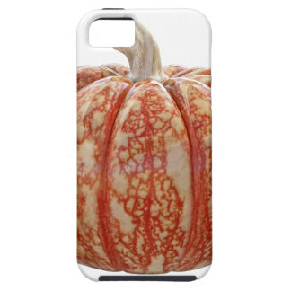 Multi Colored Pumpkin Case For The iPhone 5