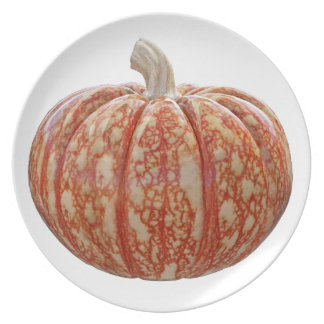Multi Colored Pumpkin Plate